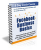 Thumbnail Facebook Business Basics 5 Day Crash Course w PLR